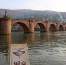 Heidelberg220px(0)